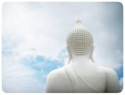 buddha ruecken 250