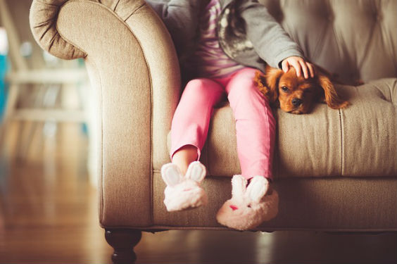 maedchen hund sofa zt 564