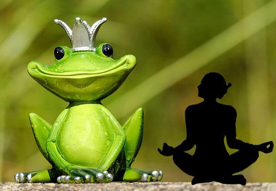 raja yoga koenig medi tt 564