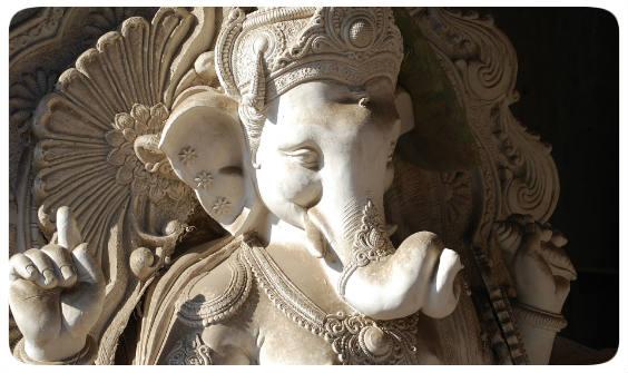 weisheit elefant 564