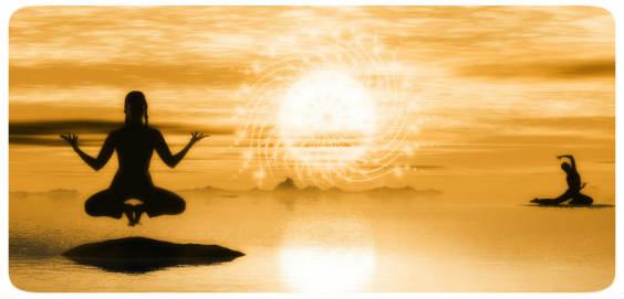 yoga gold 564