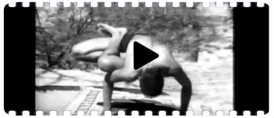 video iyengar