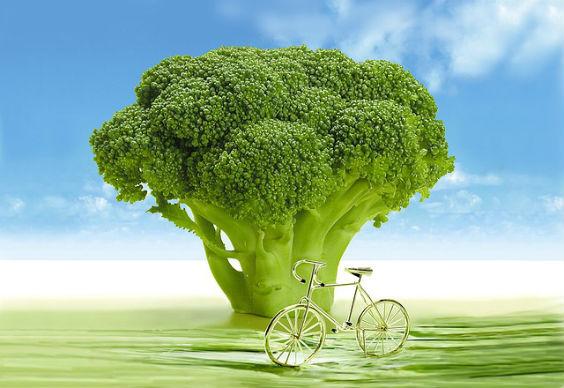 brokkoli gruen fahrrad 564