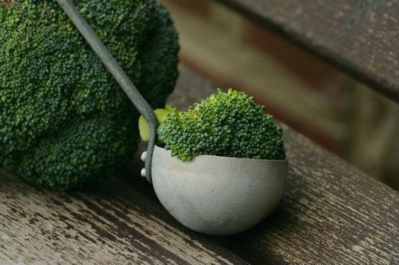 brokkoli kelle 564