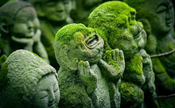 buddha figuren moos e 564