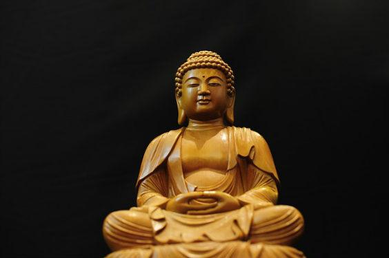 buddha gold hg s 8 564