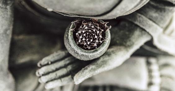 buddha sitz lotus 0x halb 564