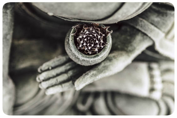 buddha sitzend 564
