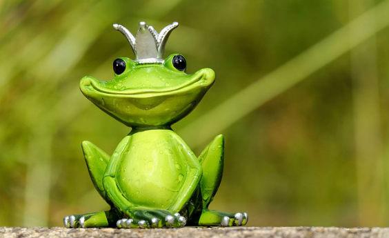 frosch grinsen gruen krone w 564