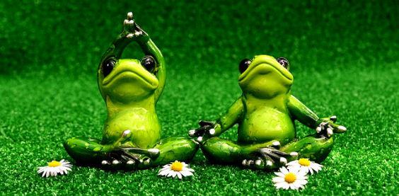 frosch yoga u3 564