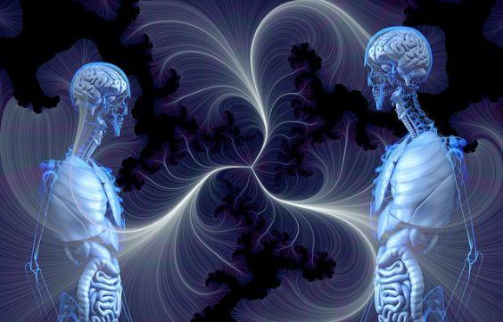 mensch anatomie skelett blau