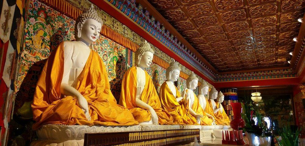 sieben buddhas 1000