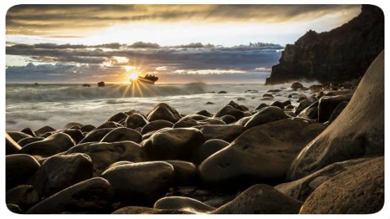 strand steine 564