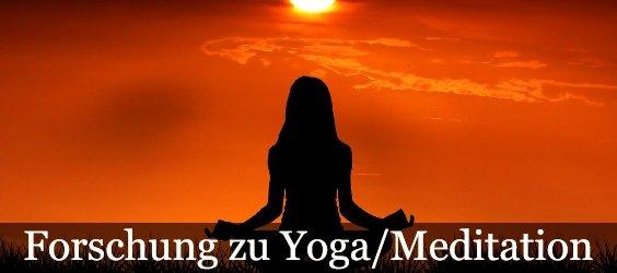 yoga forschung 250