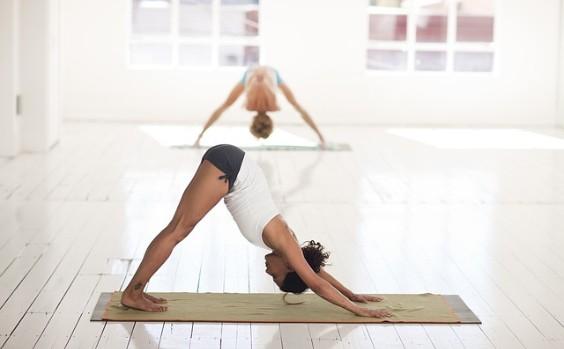 yoga hund matte kleidung 564