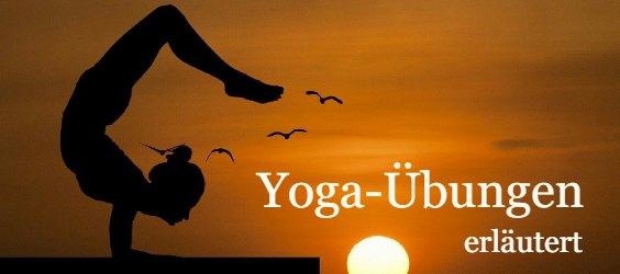 yoga uebungen erlaeutert 250