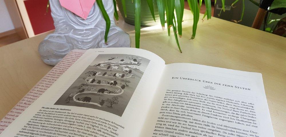 handbuch medi bild stufen 1000
