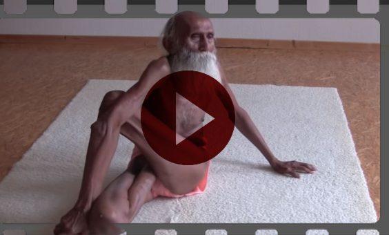 video yogi 101 i3e